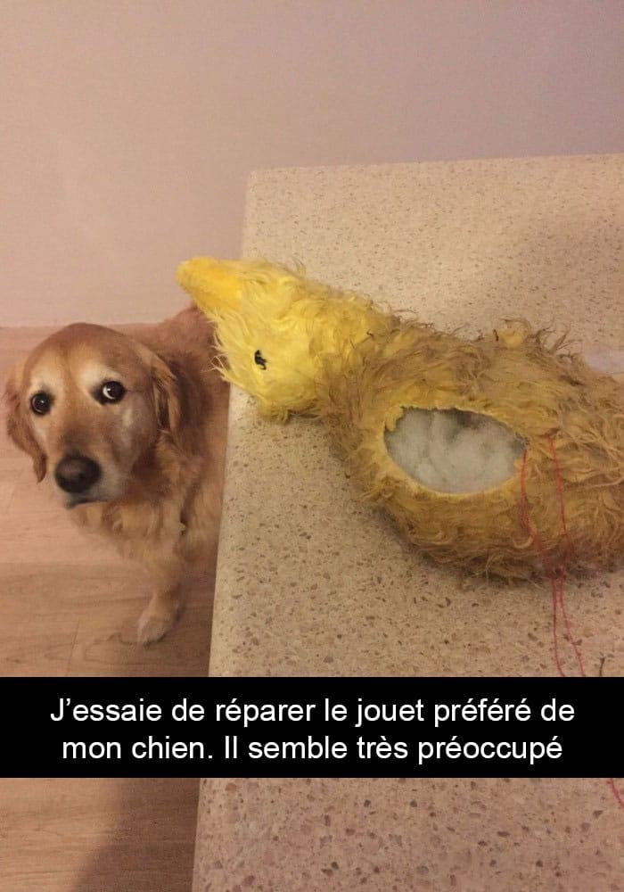 J'essaie de réparer le jouet préféré de mon chien.