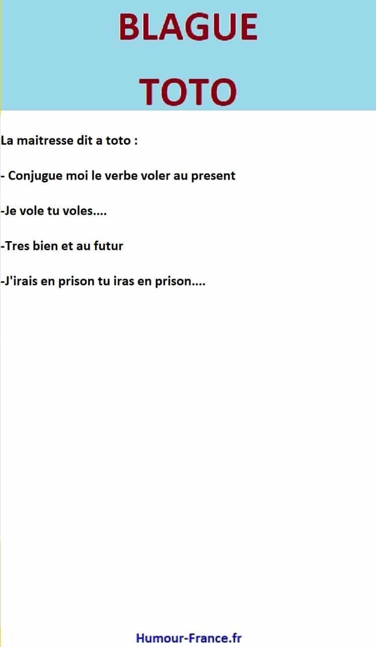 Conjugue Moi Le Verbe Voler Au Present Humour France Fr