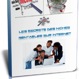 Les secrets des niches rentable sur internet