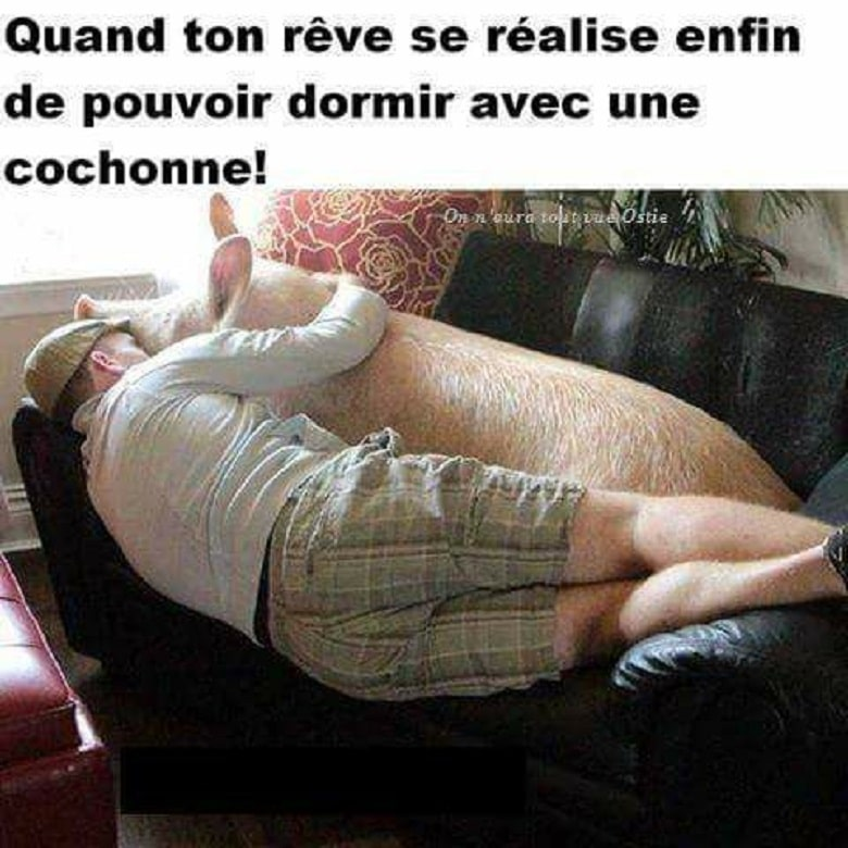 Quand ton rêve se réalise enfin de pouvoir dormir avec une cochonne !*