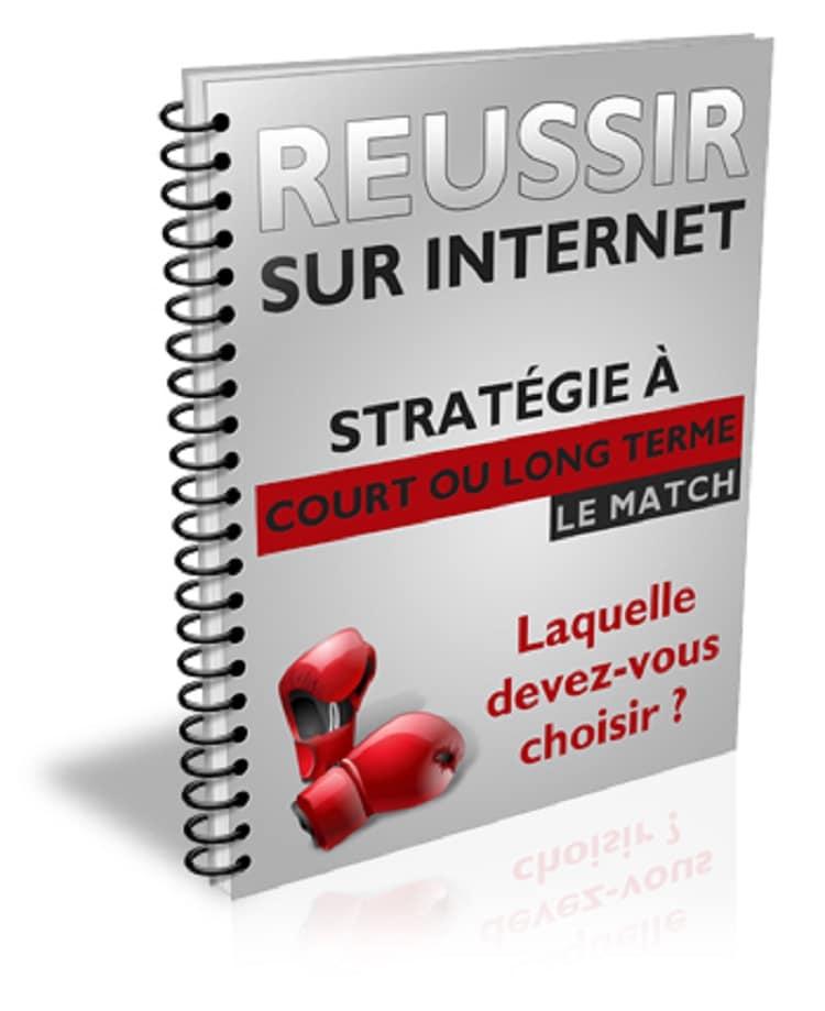 Rapport Réussir sur internet - stratégie long ou court terme.