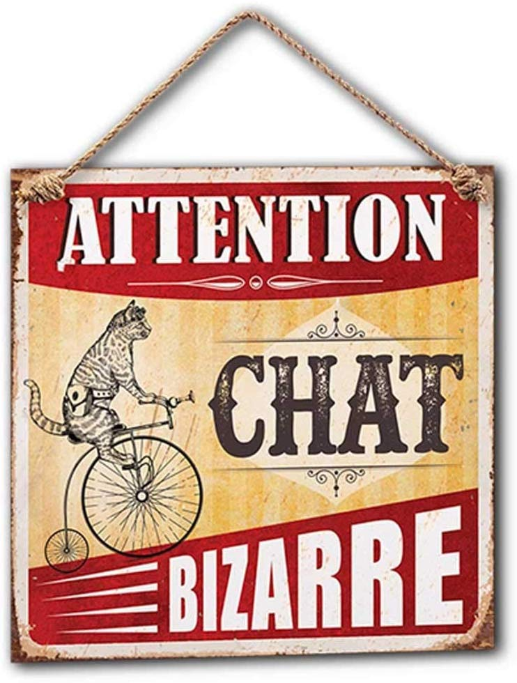 Plaque Décorative en Métal 20x20 cm – Attention Chat Bizarre