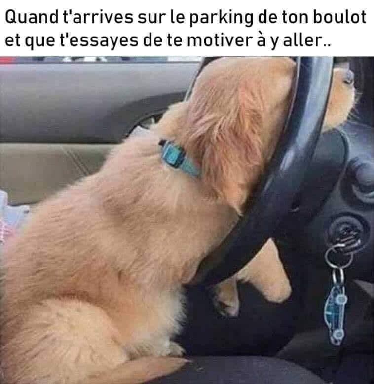 Quand t'arrive sur le parking de ton boulot