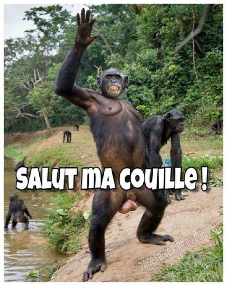 Salut ma couille !