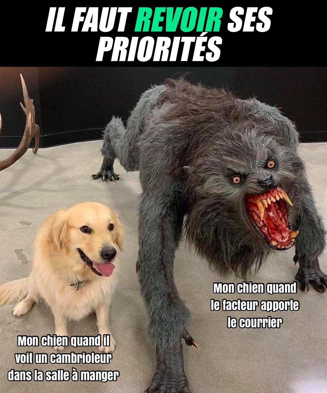 Il faut revoir ses priorités