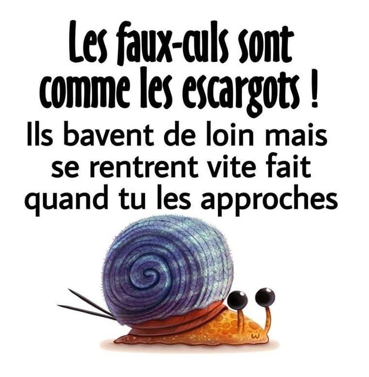 Les faux-culs sont comme les escargots !