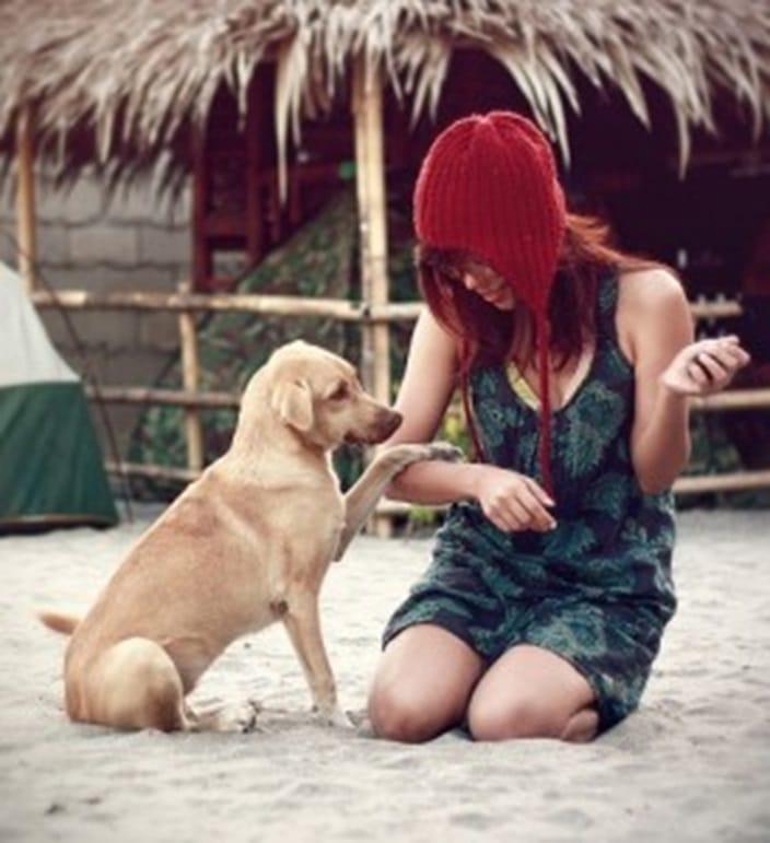 apprenez_a_votre_chien_comment_bien_se_comporter_en_toutes_circonstances