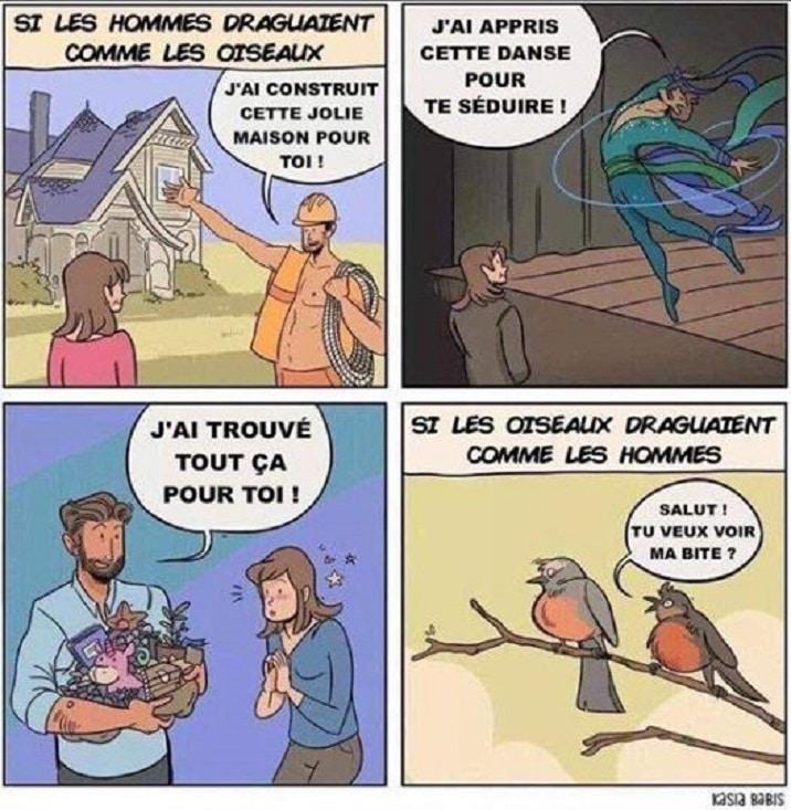 Si les hommes draguaient comme les oiseaux