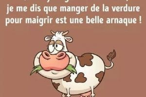 Quand je regarde les vaches, je me dis que manger de la verdure pour maigrir est une belle arnaque !