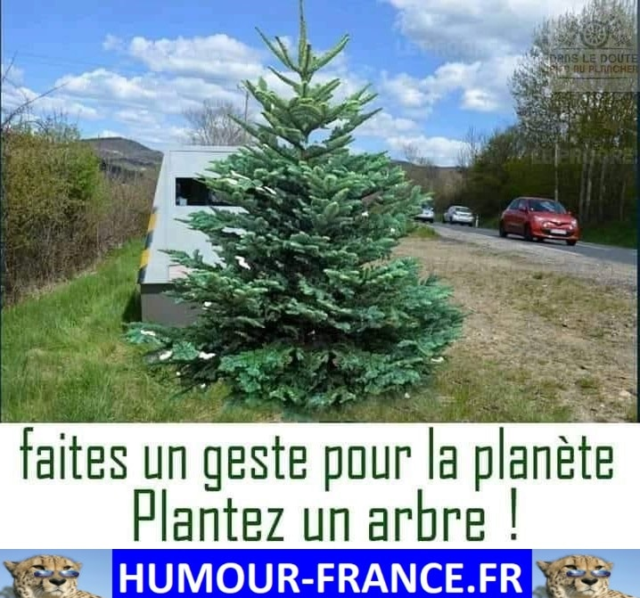Faites un geste pour la planète plantez un arbre !